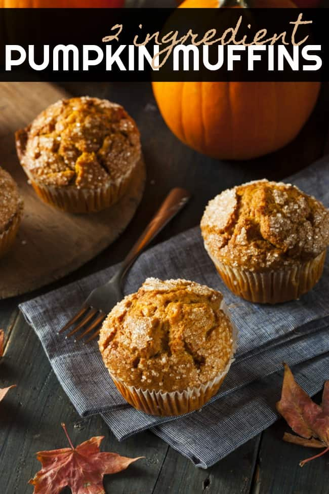 Quick and easy 2 ingredient pumpkin muffins. These pumpkin muffins are low fat, delicious and super easy to make. Great for a quick fall breakfast!