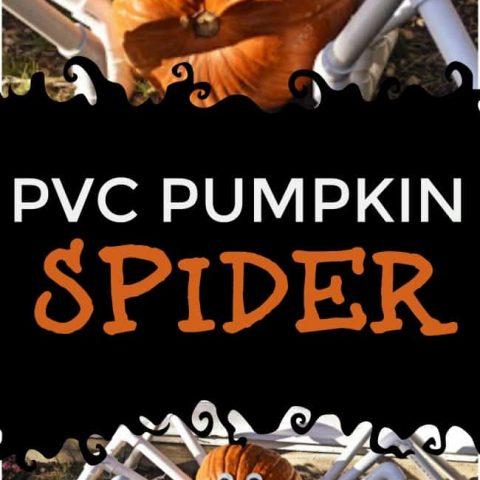 PVC Pumpkin Spider