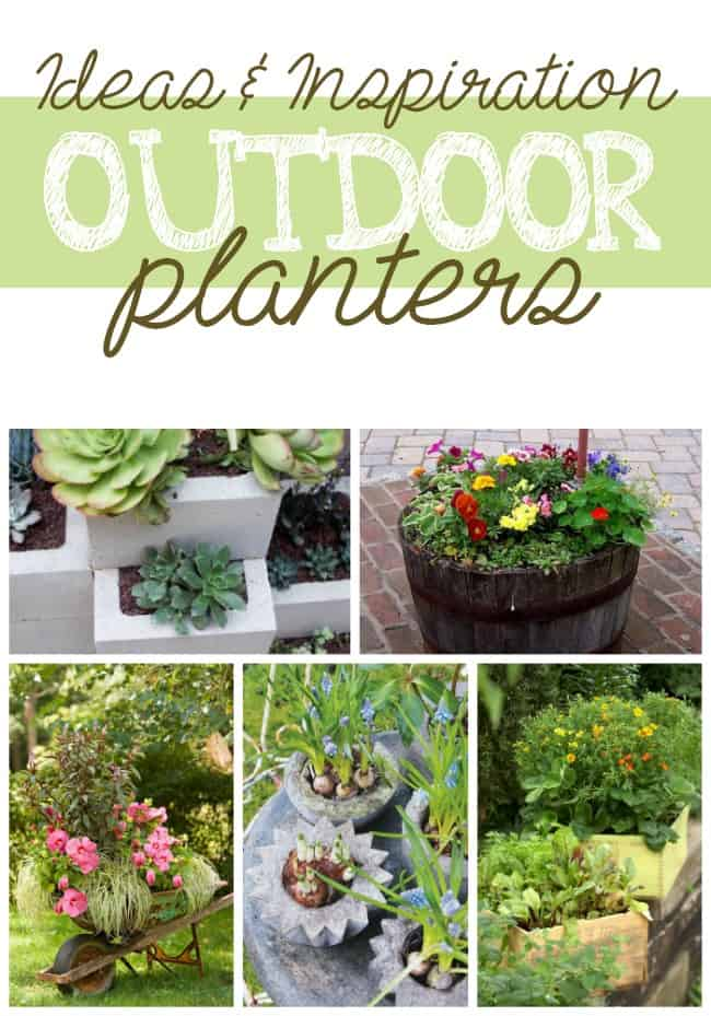 Outdoor Planters: Ideas and Inspiration