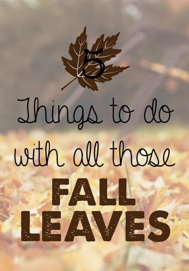 5 things to do with all those fall leaves