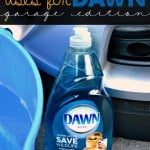 Unexpected Uses for Dawn: Garage Edition