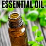 Top uses for Peppermint Essential Oil. A list of the most common and favorite uses and benefits.