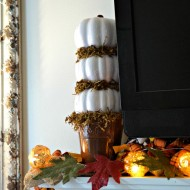 This quick and easy craft is perfect to add a touch of fall to your home. All supplies bought at the dollar store for a total of $5.