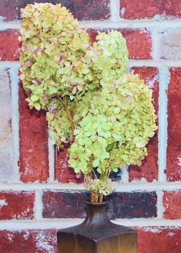 Farmhouse Fall Decor & Ideas