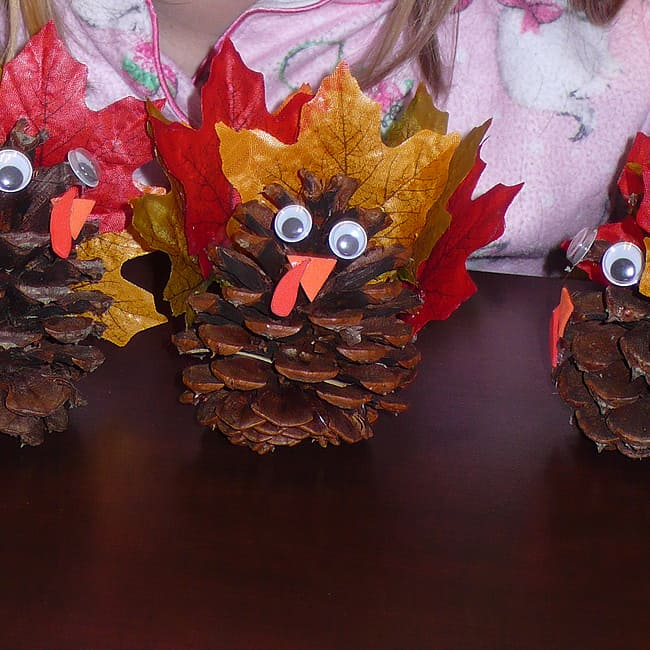 pinecone-turkey