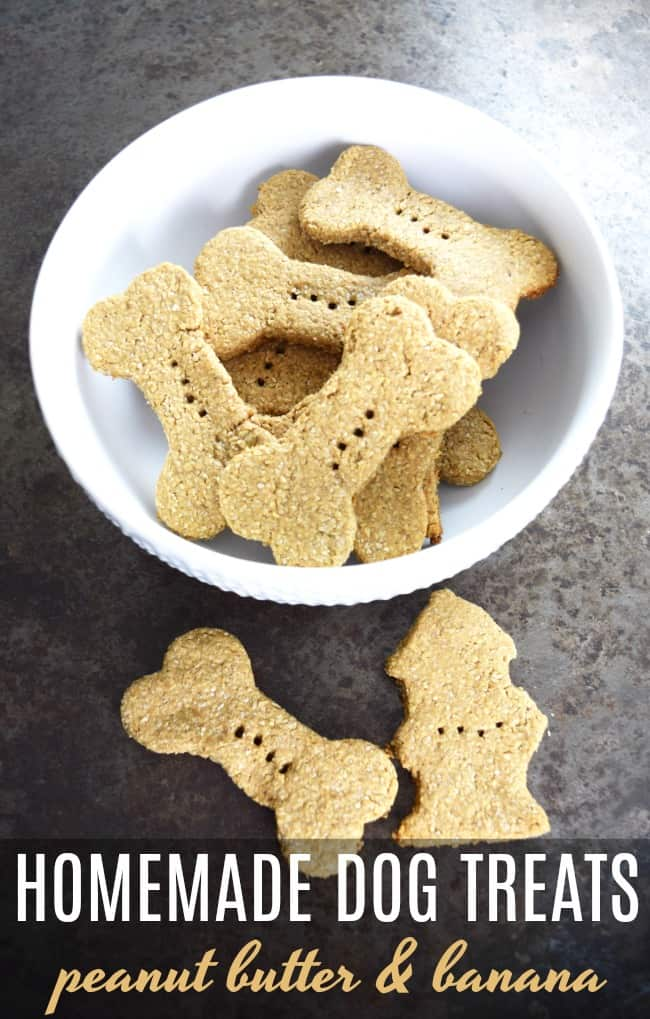 This homemade dog treats recipe is a nutritious and tasty treat that any dog would love. Skip the store bought dog treats and go homemade.