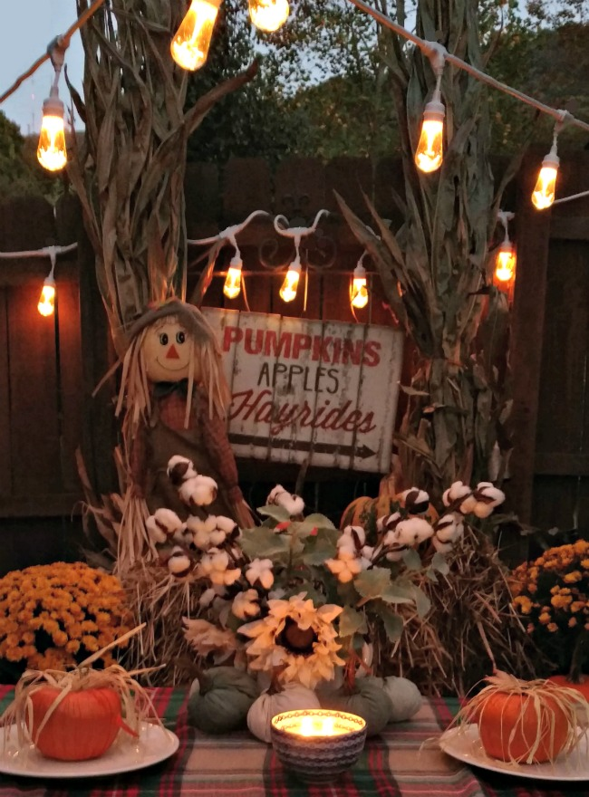 Looking to have a cozy outdoor fall party or spooky Halloween one this year? Get inspired with these fall party ideas for outdoor entertaining and celebrate the beauty and the bounty of the season in style.