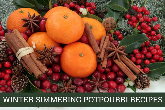 These simmering potpourri recipes will have your house smelling heavenly with the delicious scents of whatever season you are craving.