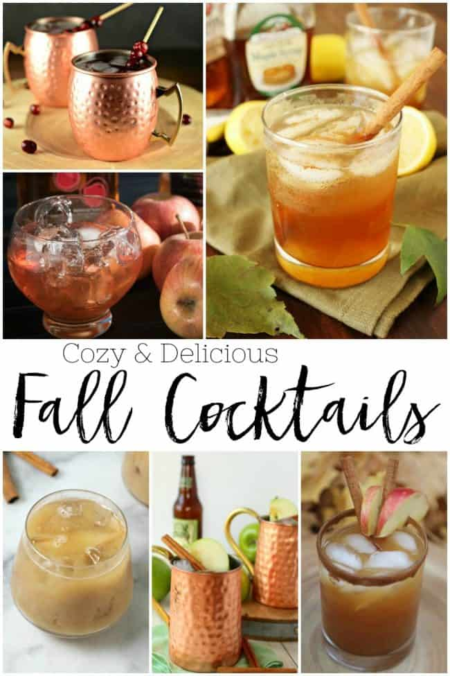 If fall is your favorite time of the year then you will not want to miss out on these fall cocktails. These cozy and delicious drink recipes are infused with alcohol and all of your favorite fall flavors.