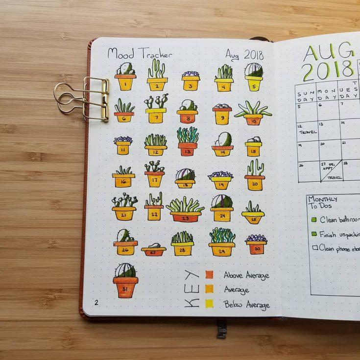 Succulent Mood Tracker