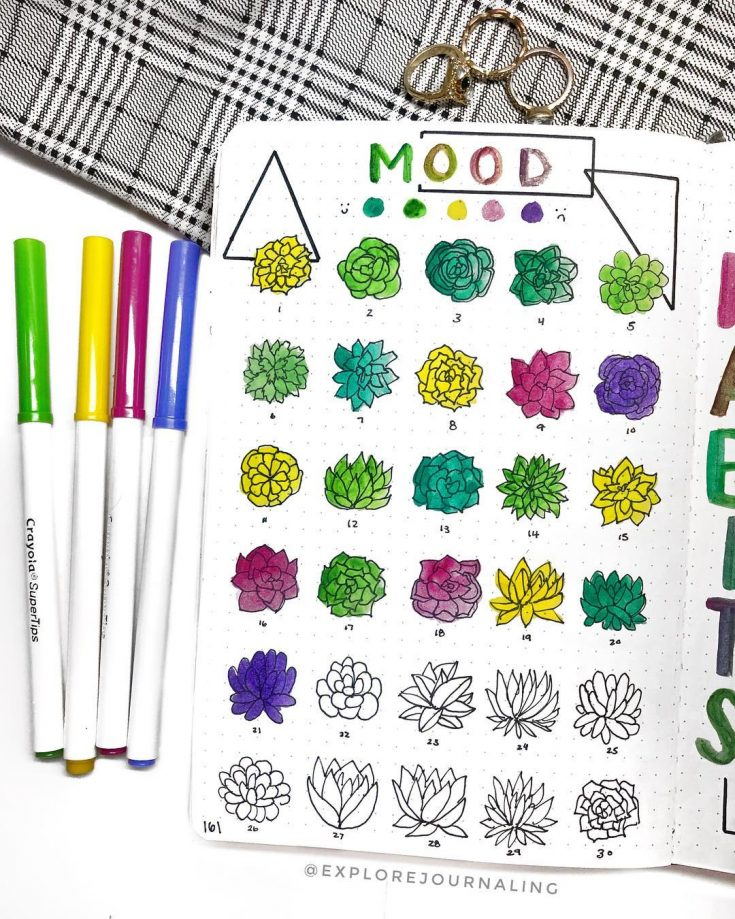 Succulent Mood Tracker V2