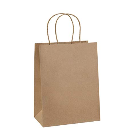 Brown Paper Bags for Fall Leaf Hunting Activity