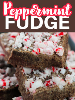 This photo features a plate of peppermint fudge with the logo as the same.
