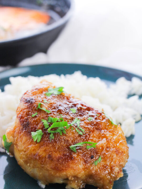 This photo features a blue plate of white sticky rice and honey garlic chicken thighs.