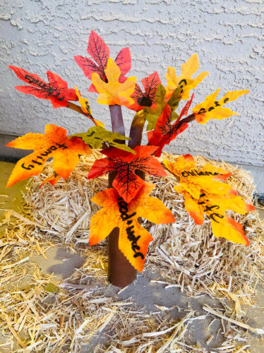 This photo features a fall thankful tree made from a paper towel roll with fall leaves wrote on with what everyone is thankful for.