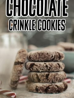 This photo features a stack of vegan chocolate crinkle cookies.