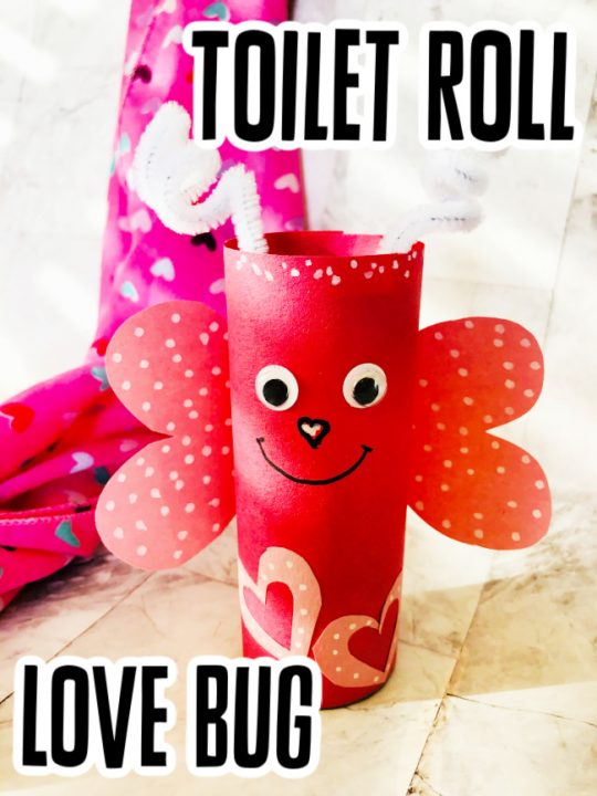 This photo features a created version of the Toilet Roll Love Bug craft for kids.