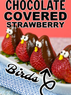 Chocolate Covered Strawberries that are decorated as birds